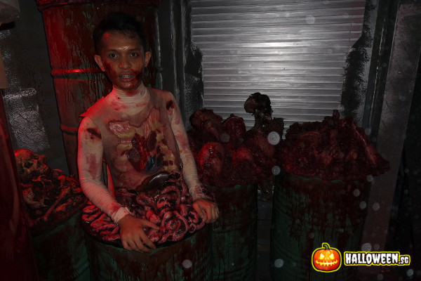 2014 Halloween Horror Nights 4 - The LAB - Intestine subject