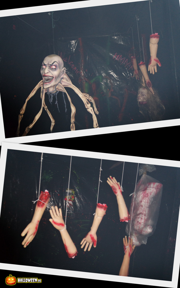 2014 Museum Of Horrors 5 - Into Darkness Maze - Hanging spider