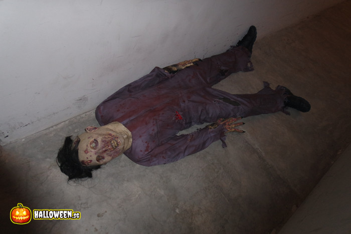 2014 Museum Of Horrors 5 - Dead Corpse